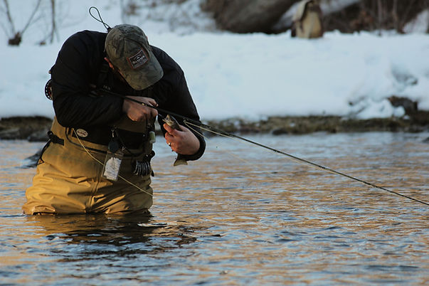 Dan Baughman releasing a small brown trout on the Little Juniata River in the winter.