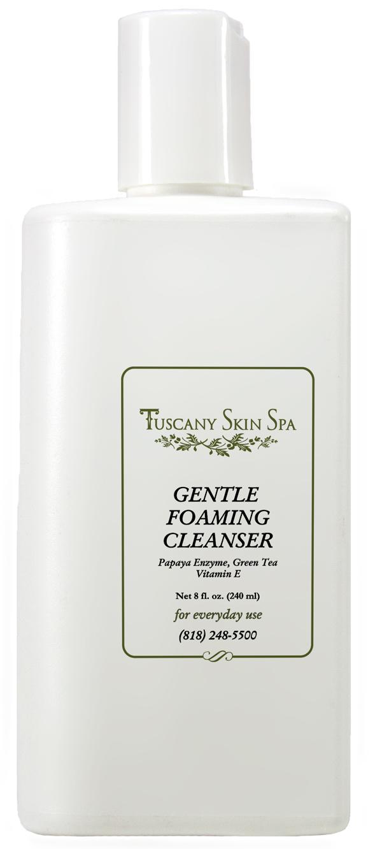 Gentle Foaming Cleanser