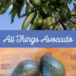 All Things Avocado