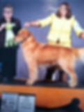 Lee's Dog Cane - winning