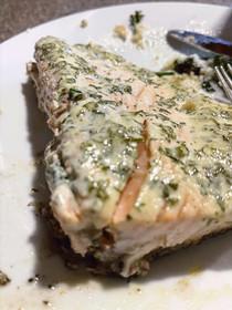 Salmon with Cilantro Sauce