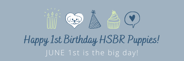 Happy Birthday HSBR Puppies!.png