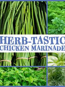Herb-Tastic Chicken Marinade