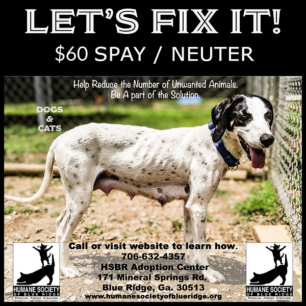$60 spay neuter.png