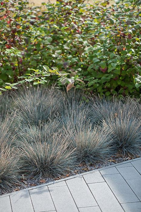 BOQ dum-zahrada-07.jpg