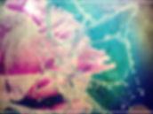 Tudor Anghelina - Butterflu.jpg