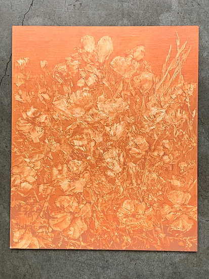 "field study 8, poppy patch, 10x12"" oil on linen panel"