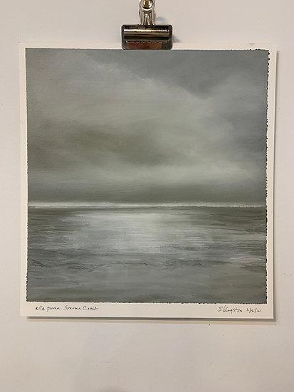 """alla prima, sonoma coast, 3/2/21  15x16"""" oil on arches paper unframed"""