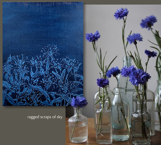 painted cyanotype iii, cornflowers, 16x20, oil on linen