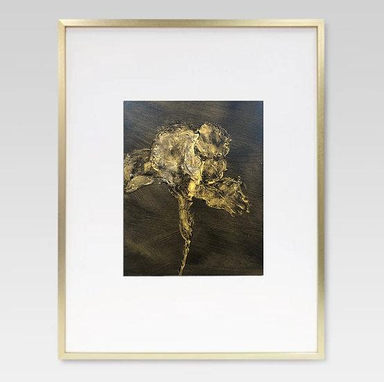 "'burnished iris' 8x10"" oil on paper, framed"