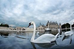 chantilly vip turismo paris.jpg