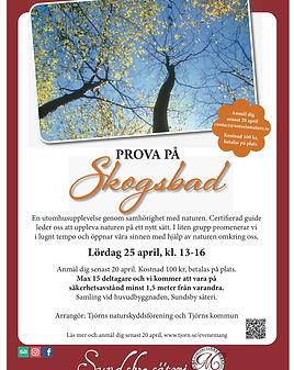 Skogsbad,_sundsby_säteri.jpg