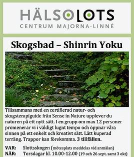 Skogsbad_ht 19 (1)_edited.jpg