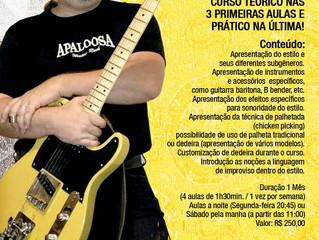 Curso Presencial - Introdução a Guitarra Country - Guto Vighi - Imks Jardins