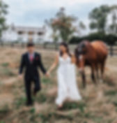 horses pet friendly at the best outdoor wedding venue in northern virgnia