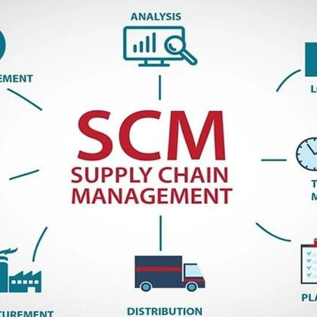 What is the role of Transportation Management in connection with Supply Chains?
