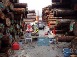 PDC木材