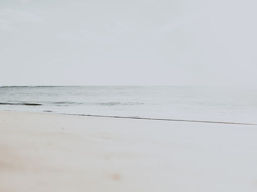 Photography by Territory Creatives over looking the sandy beach shores to the open ocean.