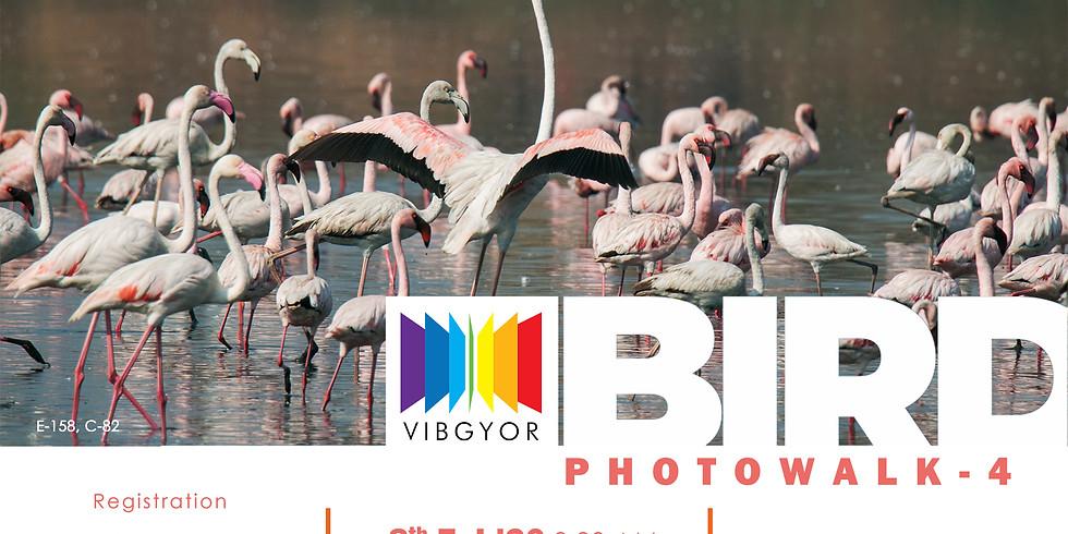 Bird Photowalk - 4