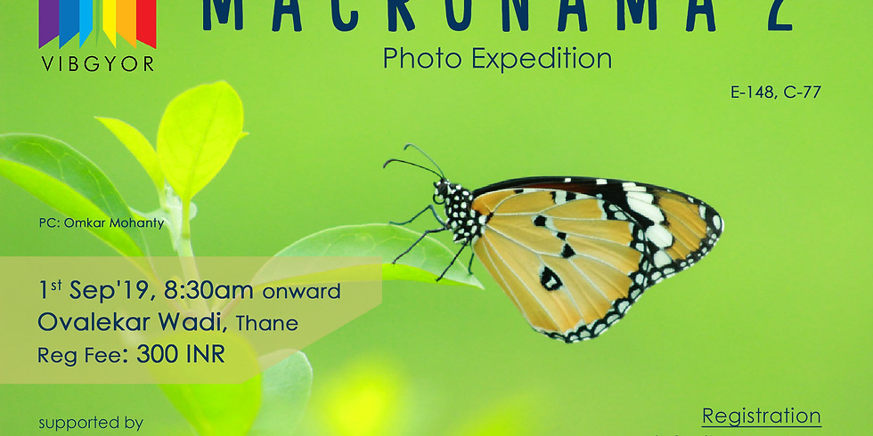 Macronama 2