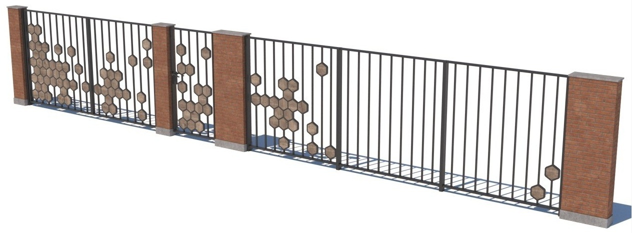 Gate and fences 4