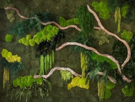 Moss 19