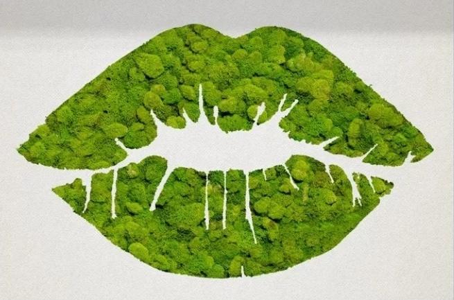 Moss 12