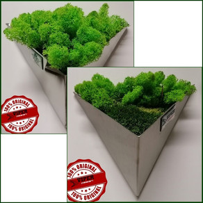 Stainless steel triangle pots