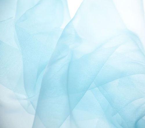 blue organza.jpg