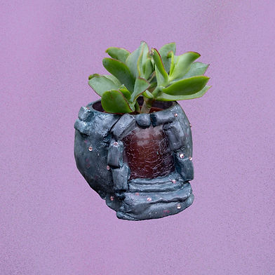 Sculpture by Aimee Haldane titled The Imagi-Nation made of clay and mixed media. The grey clay base is holding a succulent plant.