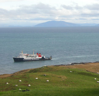 Looking out to an island, with a Calmac ferry in the foreground and a field with sheep grazing.