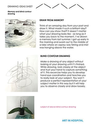 Ideas Sheet with written suggestions on draiwng from memory and blind contour drawing with accompanying illustrations.