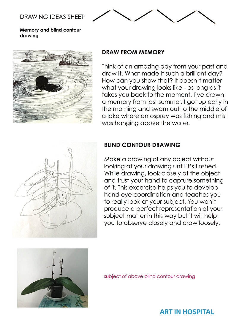 Drawing Ideas Sheet, including text with suggestions on how to make a drawing from memory and to make a blind contour drawing, accompanied by pencil and ink illustrations for each of the two drawing excerises.