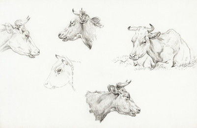 Four study sketches of cows (1821) by Jean Bernard (1775-1883)
