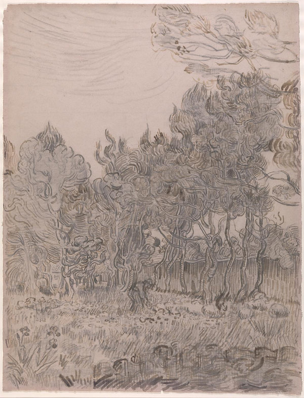 Van Gogh drawing of the Garden of St Paul's Hospital at St Remy.
