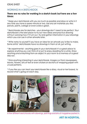 Ideas Sheet on how to keep a sktechbook includes written suggestion and photographs of sketchbooks with drawings, paiting and collage in them.