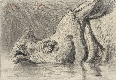 Head of a Rhinoceros, Half Submerged in the Water, August Allebé, c. 1870 - c. 1884
