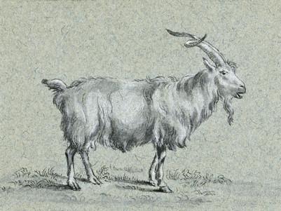 Standing goat by Jean Bernard (1775-1883). Original from The Rijksmuseum. Digitally enhanced by rawpixel.
