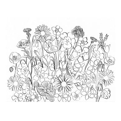 Black and white line drawing of summer flowers, they are closely bunched together.