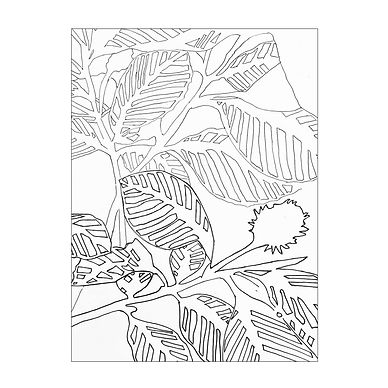 Black and white line drawing of a plant with striped leaves. The patterns make a busy picture.