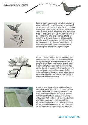 Ideas sheet with written suggestions on drawing birds or from a birds eye view with illustrations to accompany text.