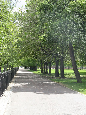 Glasgow Green. A tree-lined path in the sunshine.