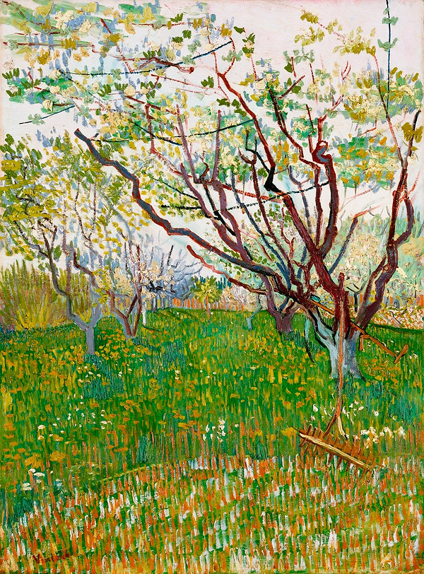 Van Gogh's The Flowering Orchard. Bright greens and rusty orange field with orchard trees and a rake in the foreground.