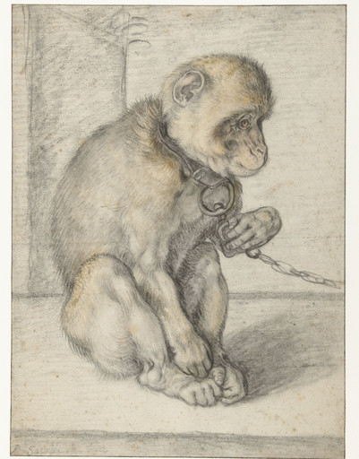 A Seated Monkey on a Chain, Hendrick Goltzius, 1592 - 1602