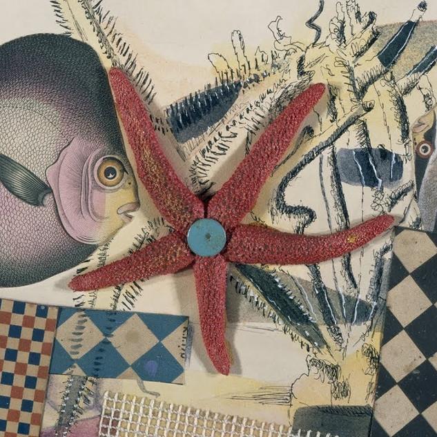 'Fish Circus' by Eileen Agar
