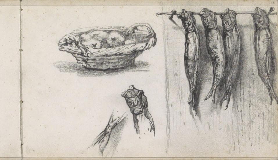 Fruitmand en drogende vissen aan een rail, Maria Vos, 1863 - c. 1864. Material: paper, pencil Source: Rijksmuseum, Public Domain
