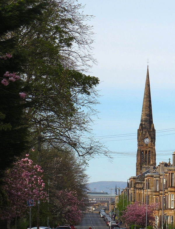 Street scene in Pollokshields Glasgow. Cherry Blossoms line a quiet residential street with view of Church with spire a clock and Campsie Hills in the distance.