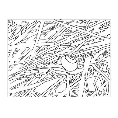 Black and white line drawing of a snail and densely interwoven grass or branches.