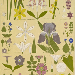 Leaves and Flowers in Nature (The Grammar of Ornament) (1868)