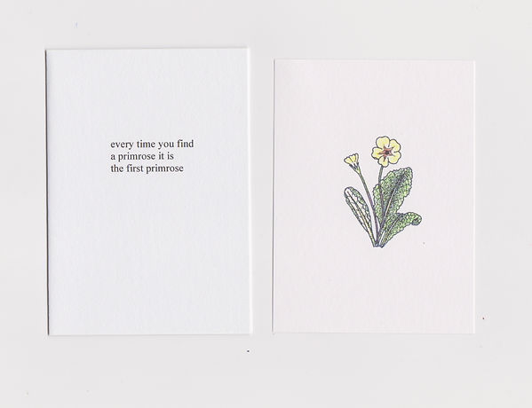 Thomas A Clark and Laurie Clark: an illustration of a primrose on the right hand side and a poem on the left, which reads: every time you find / a primrose it is / the first primrose